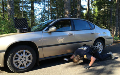 Part 2: Anatomy of a Drug Stop with the WSP